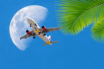 airplane in front of the moon with palm tree